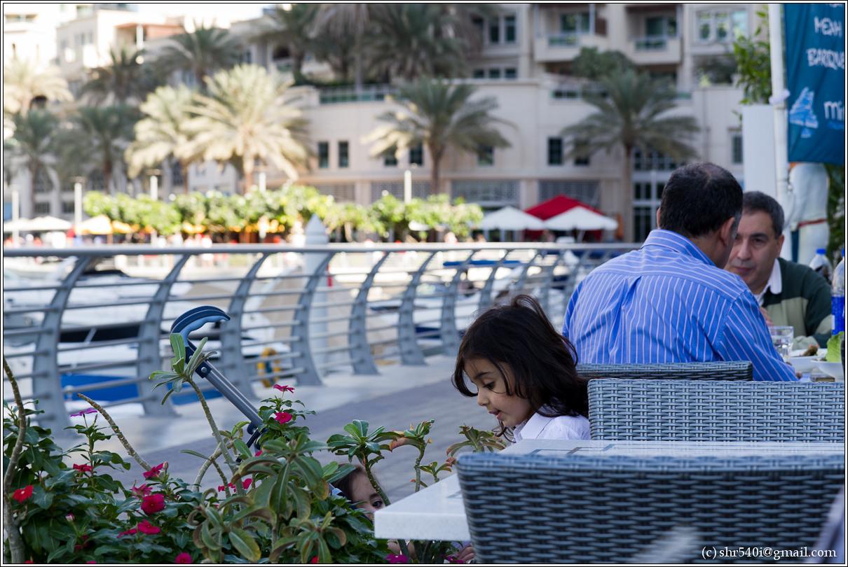 2011-01-01 13-55-26_Dubai_00053_3star.jpg