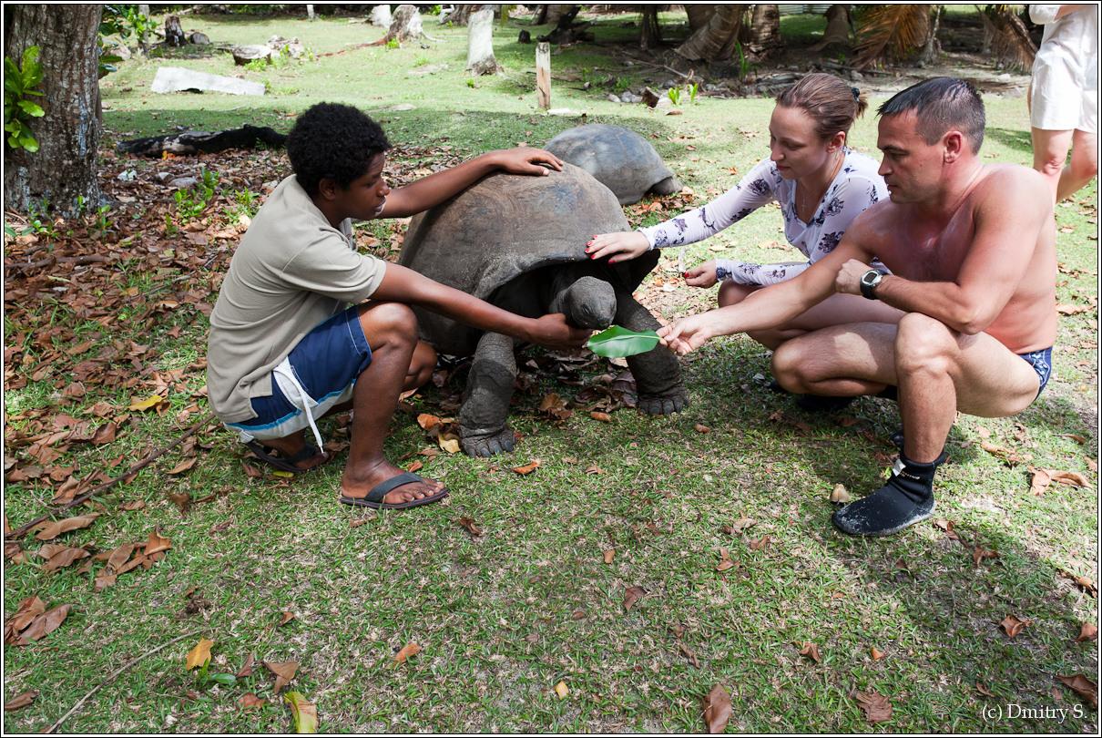 2011-01-04 13-57-54_Seychelles_DS_00037_3star.jpg