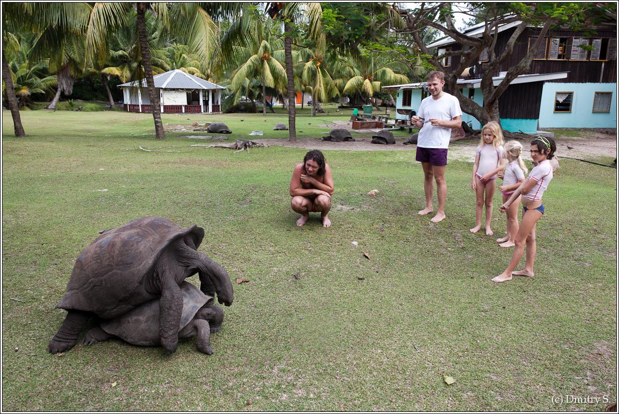 2011-01-04 14-09-14_Seychelles_DS_00050_3star.jpg