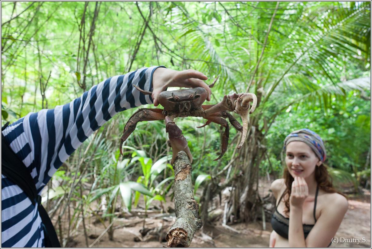 2011-01-04 15-21-34_Seychelles_DS_00069_2star.jpg