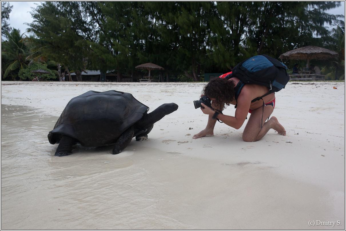 2011-01-04 16-44-22_Seychelles_DS_00080_3star.jpg