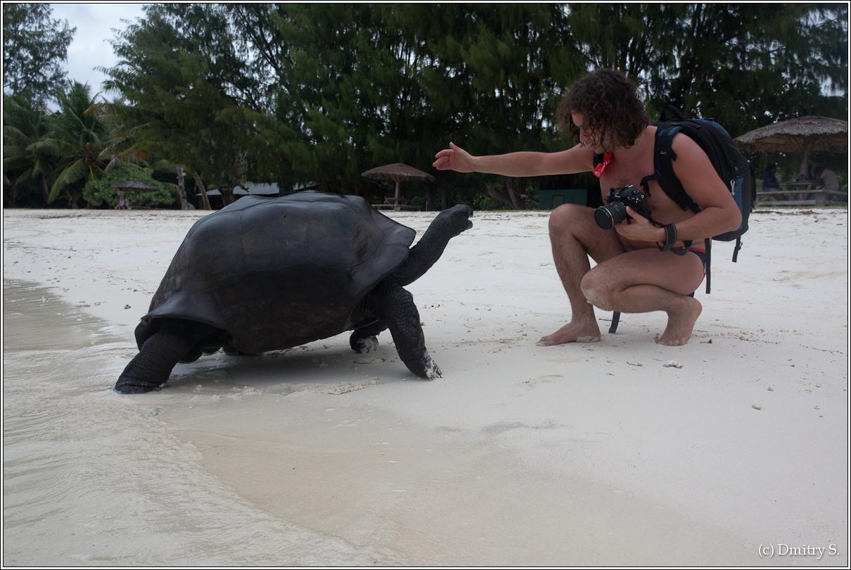 2011-01-04 16-44-32_Seychelles_DS_00085_2star.jpg