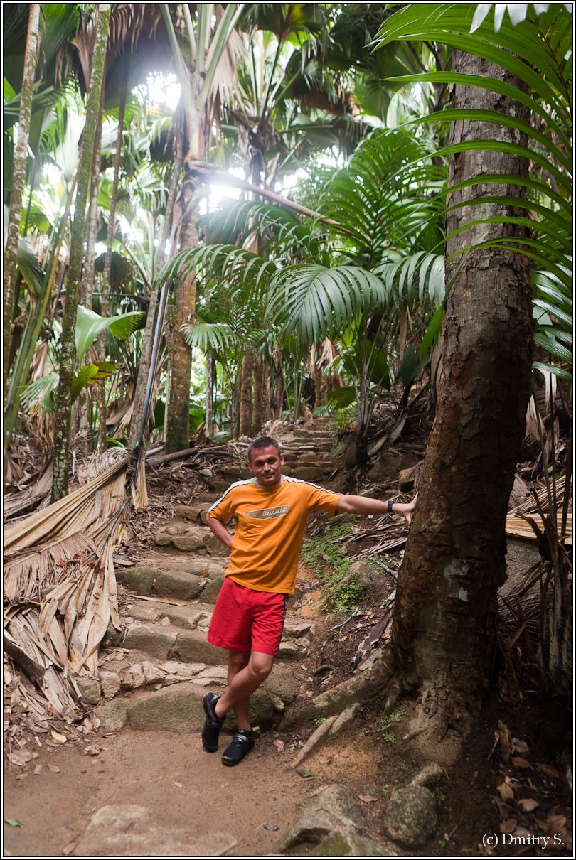 2011-01-05 16-06-20_Seychelles_DS_00237_2star.jpg