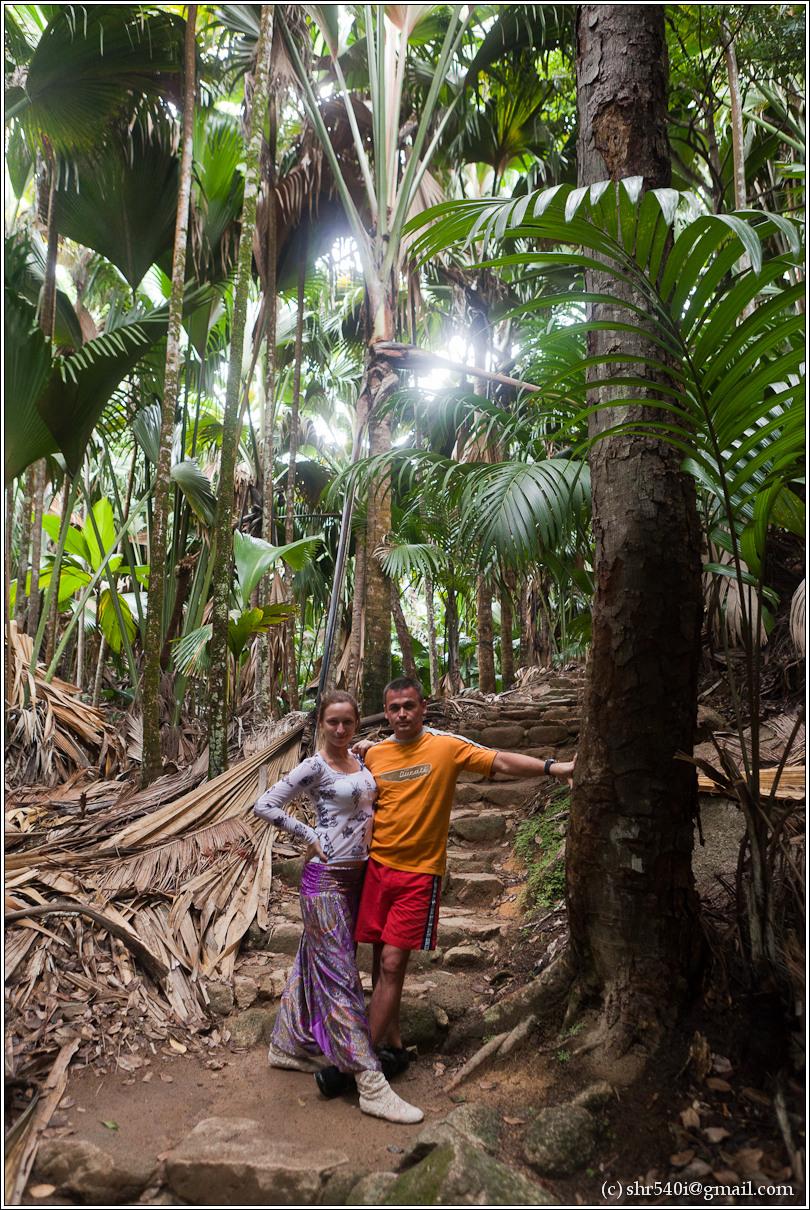 2011-01-05 16-06-38_Seychelles_DS_00238_3star.jpg