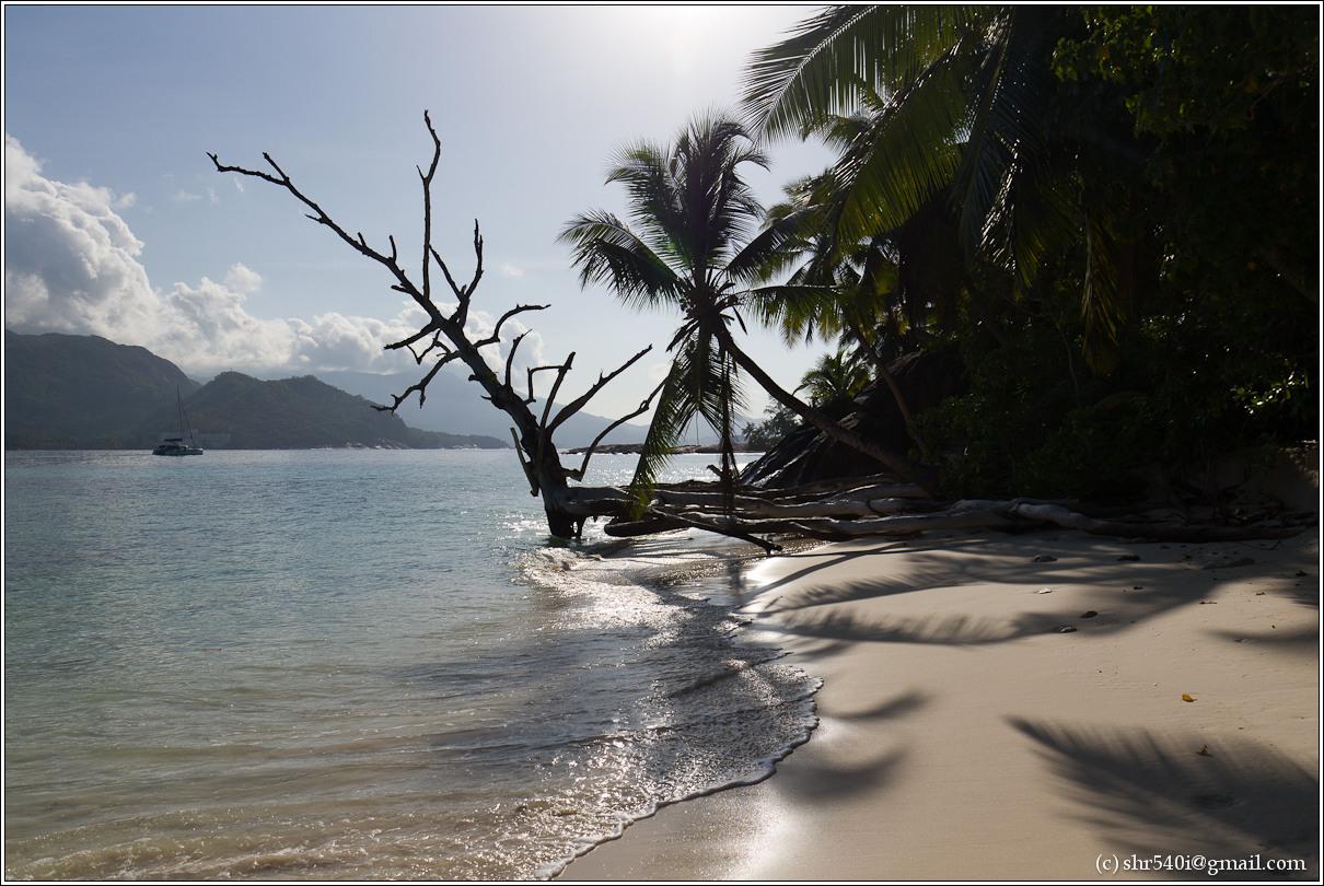 2011-01-07 08-20-44_Seychelles_00386_2star.jpg