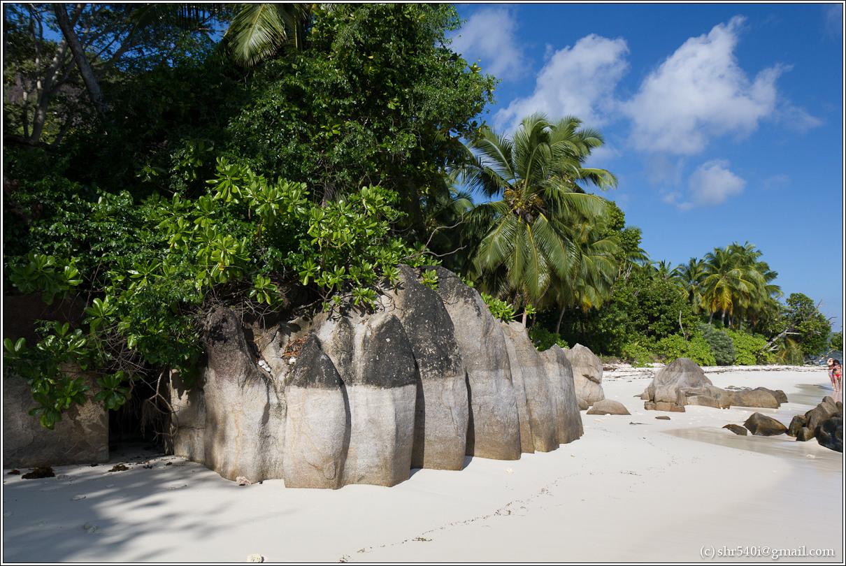 2011-01-07 08-34-22_Seychelles_00404_1star.jpg