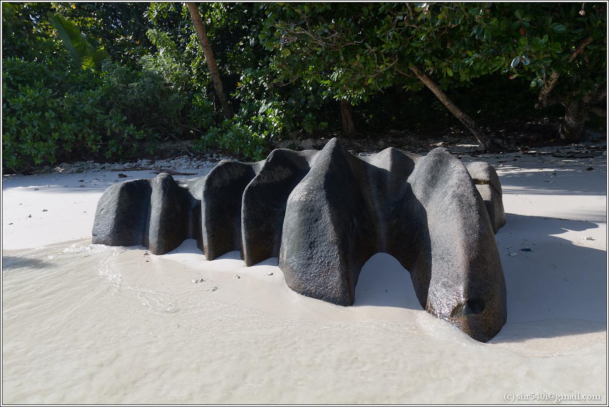2011-01-07 08-35-36_Seychelles_00405_2star.jpg