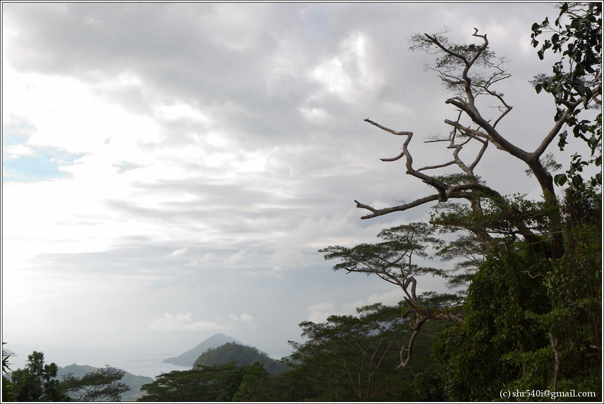 2011-01-09 16-13-32_Seychelles_00577_2star.jpg