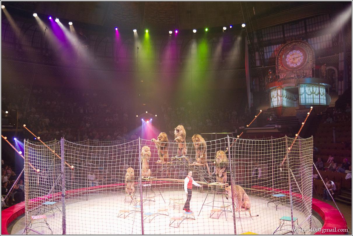 2011-06-18 18-17-31_Circus_00045_3star.jpg
